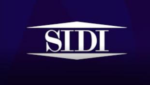 SIDI | Focalizzare l'analisi sulle dimensioni di business: l'esperienza di Alperia